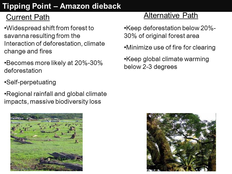 Tipping Point – Amazon dieback Widespread shift from forest to savanna resulting from the Interaction of deforestation, climate change and fires Becom