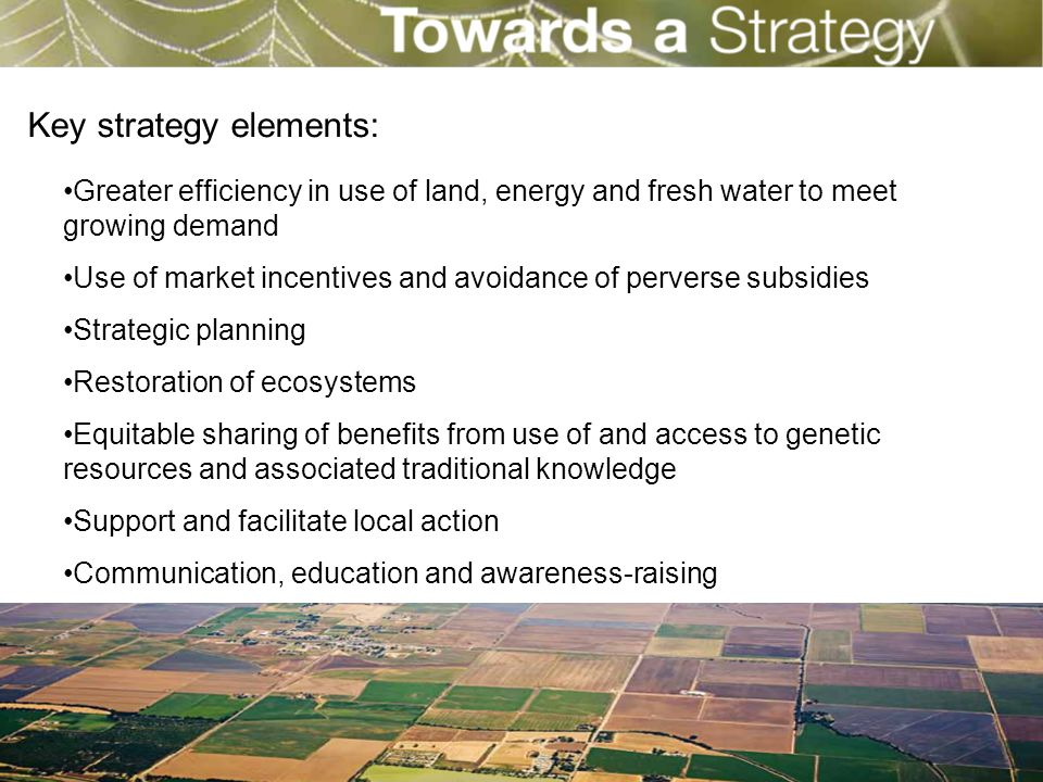 Greater efficiency in use of land, energy and fresh water to meet growing demand Use of market incentives and avoidance of perverse subsidies Strategi