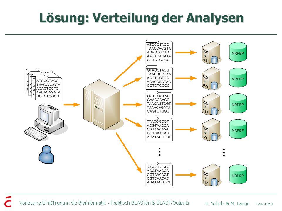 Vorlesung Einführung in die Bioinformatik - U. Scholz & M.