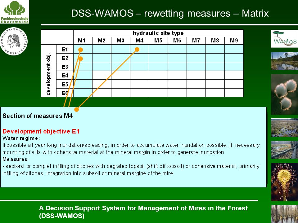 A Decision Support System for Management of Mires in the Forest (DSS-WAMOS) DSS-WAMOS – rewetting measures – Matrix