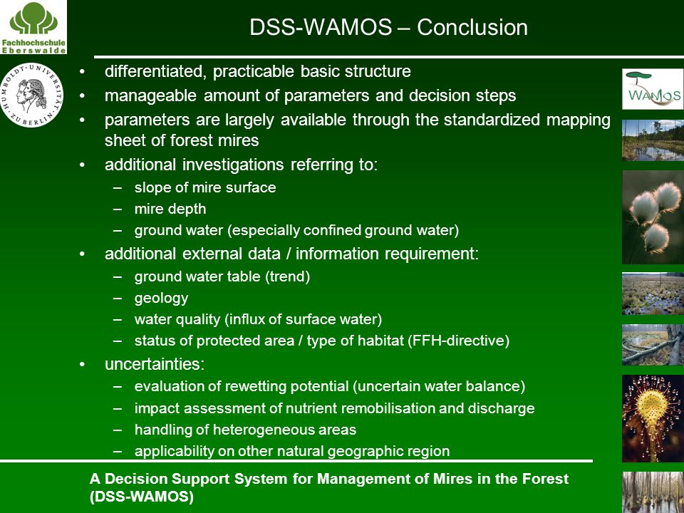 A Decision Support System for Management of Mires in the Forest (DSS-WAMOS) differentiated, practicable basic structure manageable amount of parameter