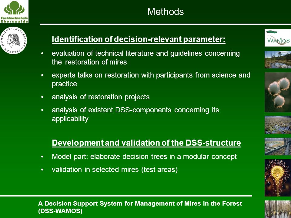 A Decision Support System for Management of Mires in the Forest (DSS-WAMOS) Identification of decision-relevant parameter: evaluation of technical lit