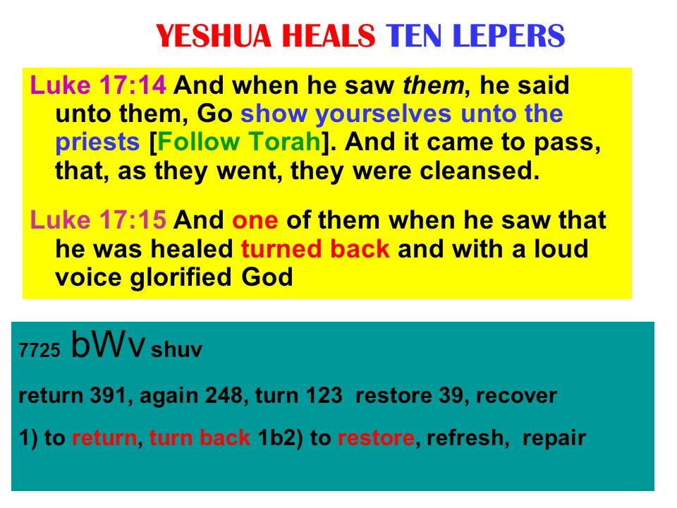 YESHUA HEALS TEN LEPERS 7725 bWv shuv return 391, again 248, turn 123 restore 39, recover 1) to return, turn back 1b2) to restore, refresh, repair Luk