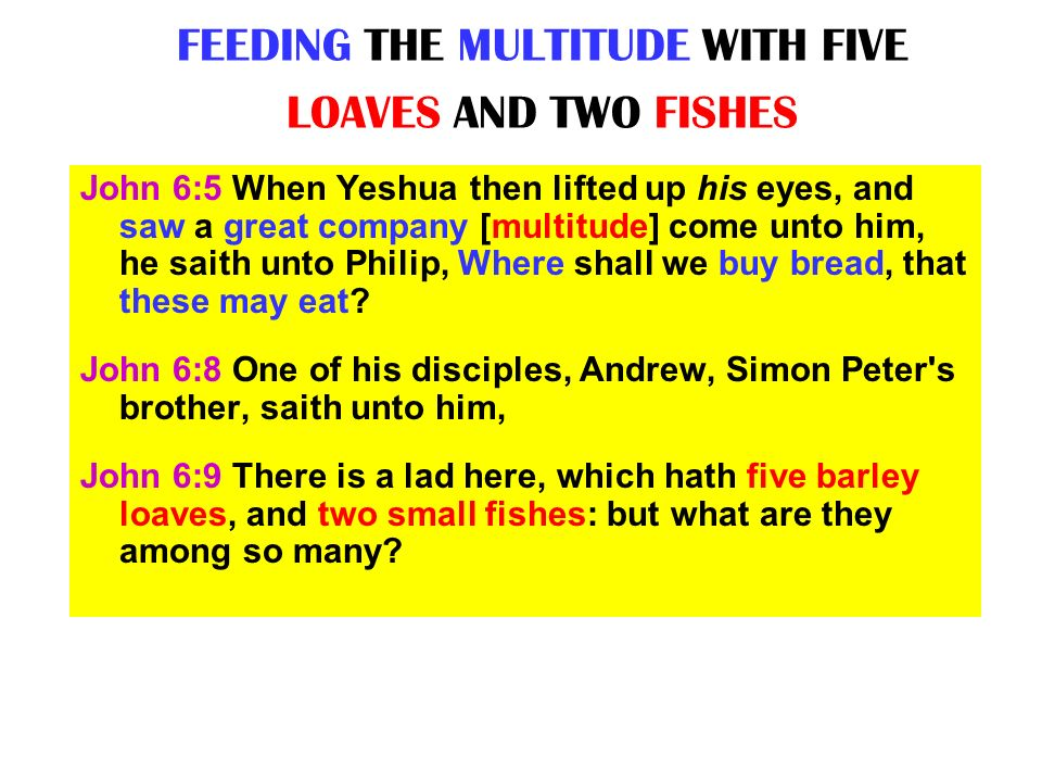 FEEDING THE MULTITUDE WITH FIVE LOAVES AND TWO FISHES John 6:5 When Yeshua then lifted up his eyes, and saw a great company [multitude] come unto him,