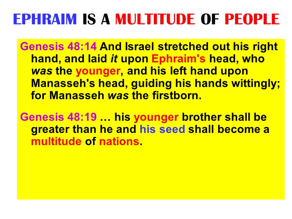 EPHRAIM IS A MULTITUDE OF PEOPLE Genesis 48:14 And Israel stretched out his right hand, and laid it upon Ephraim's head, who was the younger, and his