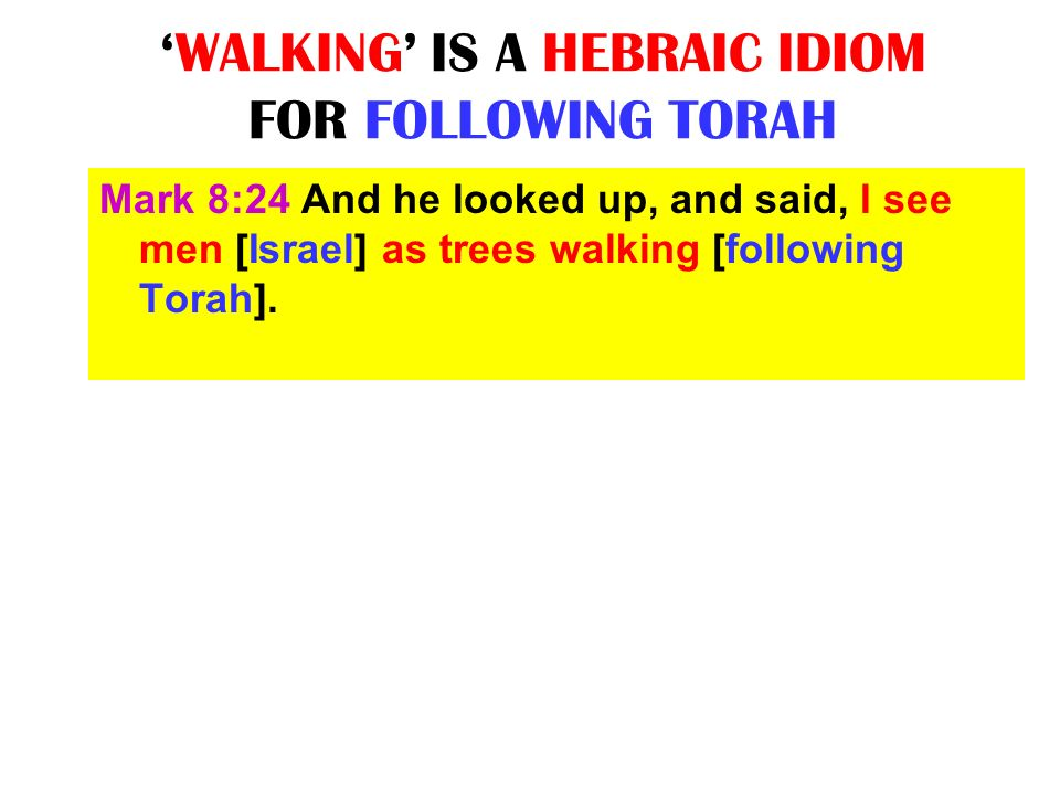 WALKING IS A HEBRAIC IDIOM FOR FOLLOWING TORAH Mark 8:24 And he looked up, and said, I see men [Israel] as trees walking [following Torah].