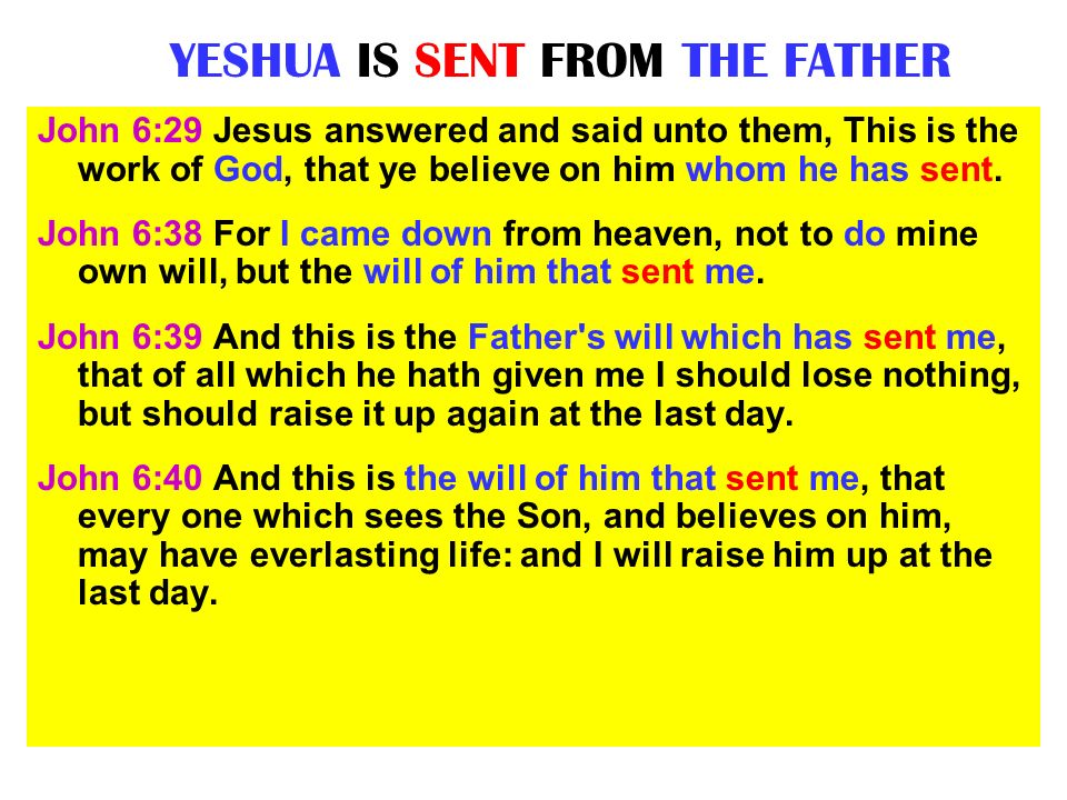 YESHUA IS SENT FROM THE FATHER John 6:29 Jesus answered and said unto them, This is the work of God, that ye believe on him whom he has sent. John 6:3
