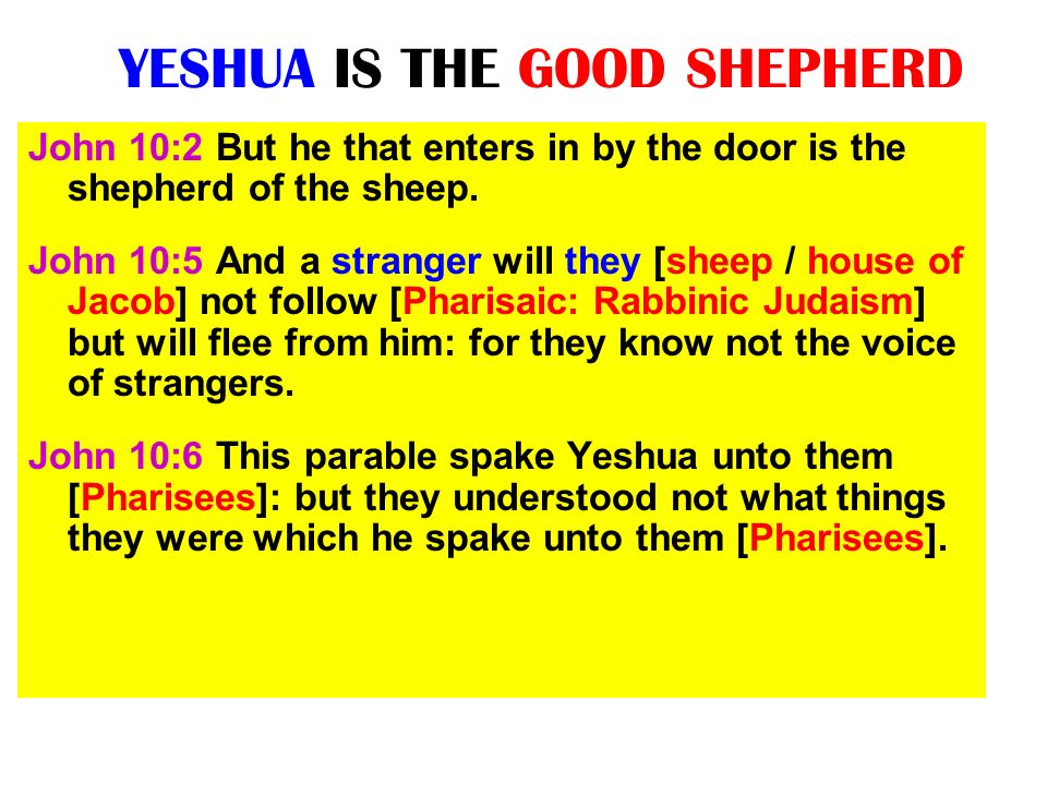 YESHUA IS THE GOOD SHEPHERD John 10:2 But he that enters in by the door is the shepherd of the sheep. John 10:5 And a stranger will they [sheep / hous