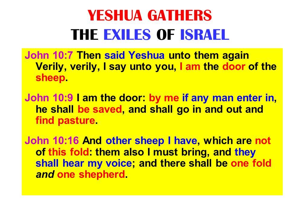 YESHUA GATHERS THE EXILES OF ISRAEL John 10:7 Then said Yeshua unto them again Verily, verily, I say unto you, I am the door of the sheep. John 10:9 I