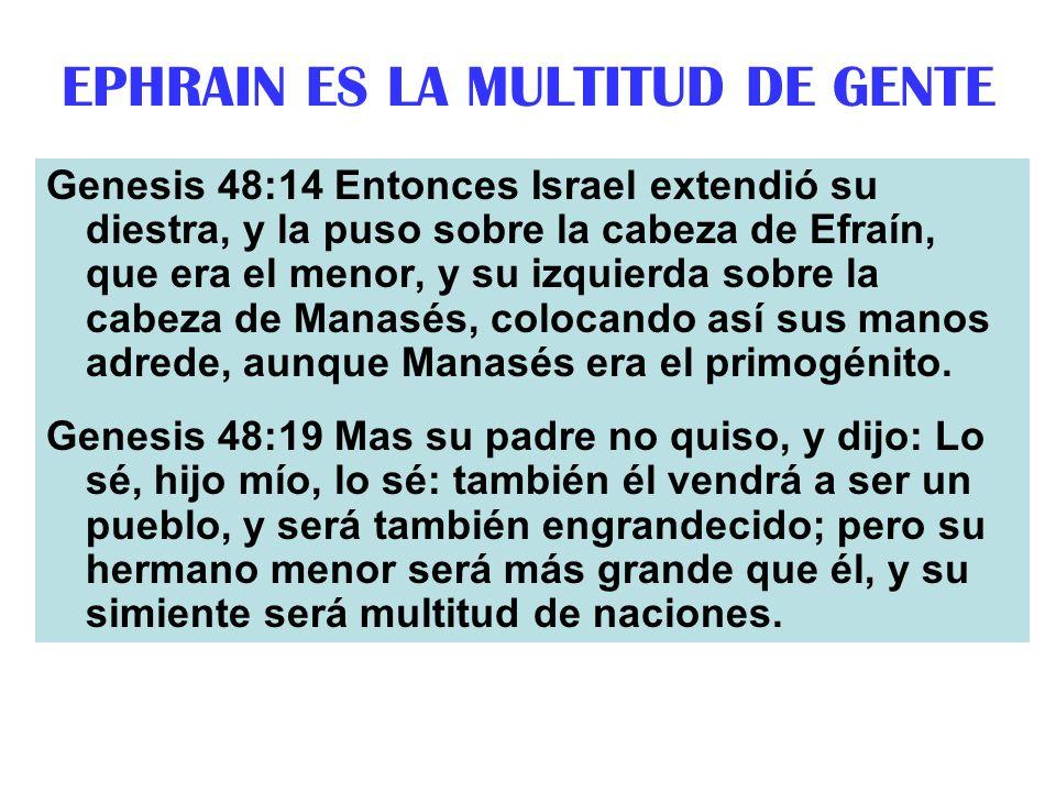 EPHRAIN ES LA MULTITUD DE GENTE Genesis 48:14 Entonces Israel extendió su diestra, y la puso sobre la cabeza de Efraín, que era el menor, y su izquier