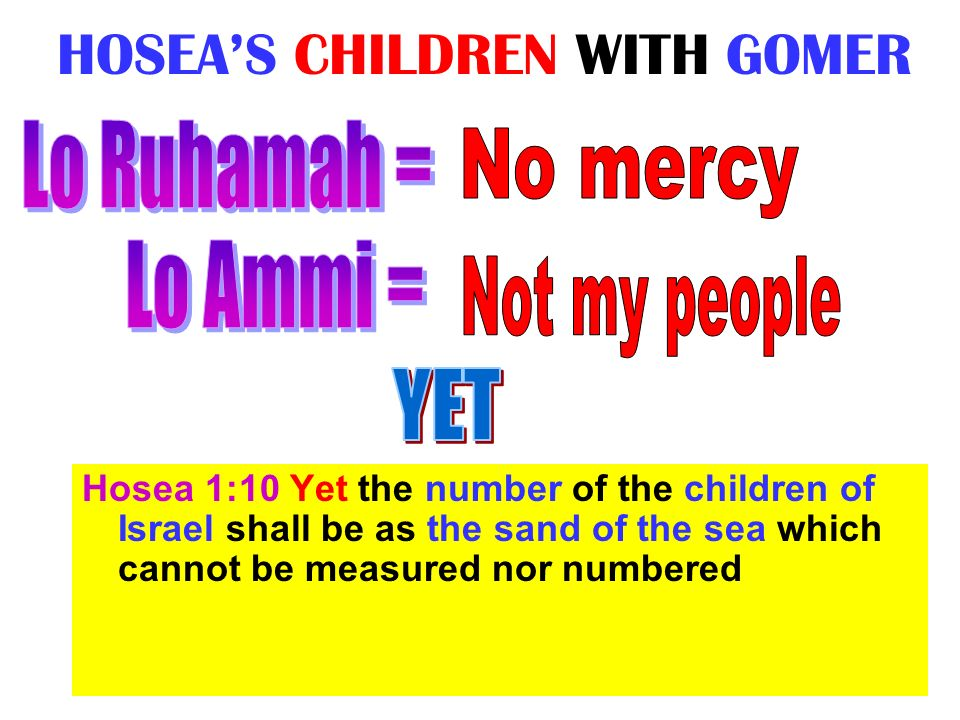 HOSEAS CHILDREN WITH GOMER Hosea 1:10 Yet the number of the children of Israel shall be as the sand of the sea which cannot be measured nor numbered