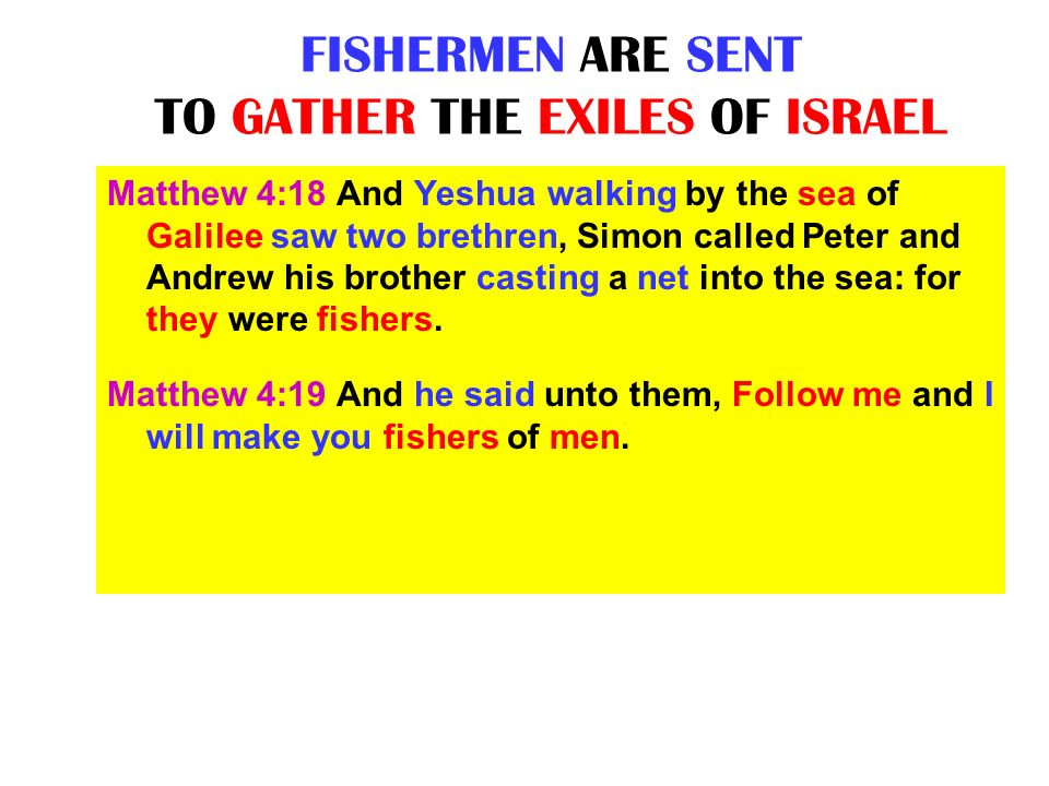 FISHERMEN ARE SENT TO GATHER THE EXILES OF ISRAEL Matthew 4:18 And Yeshua walking by the sea of Galilee saw two brethren, Simon called Peter and Andre