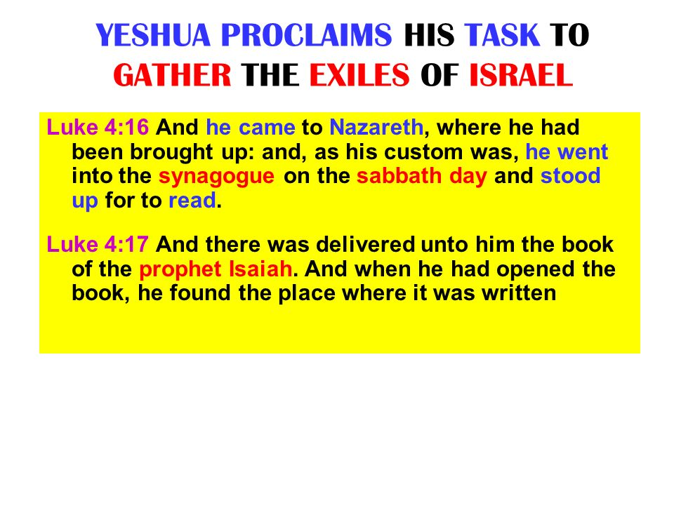 YESHUA PROCLAIMS HIS TASK TO GATHER THE EXILES OF ISRAEL Luke 4:16 And he came to Nazareth, where he had been brought up: and, as his custom was, he w
