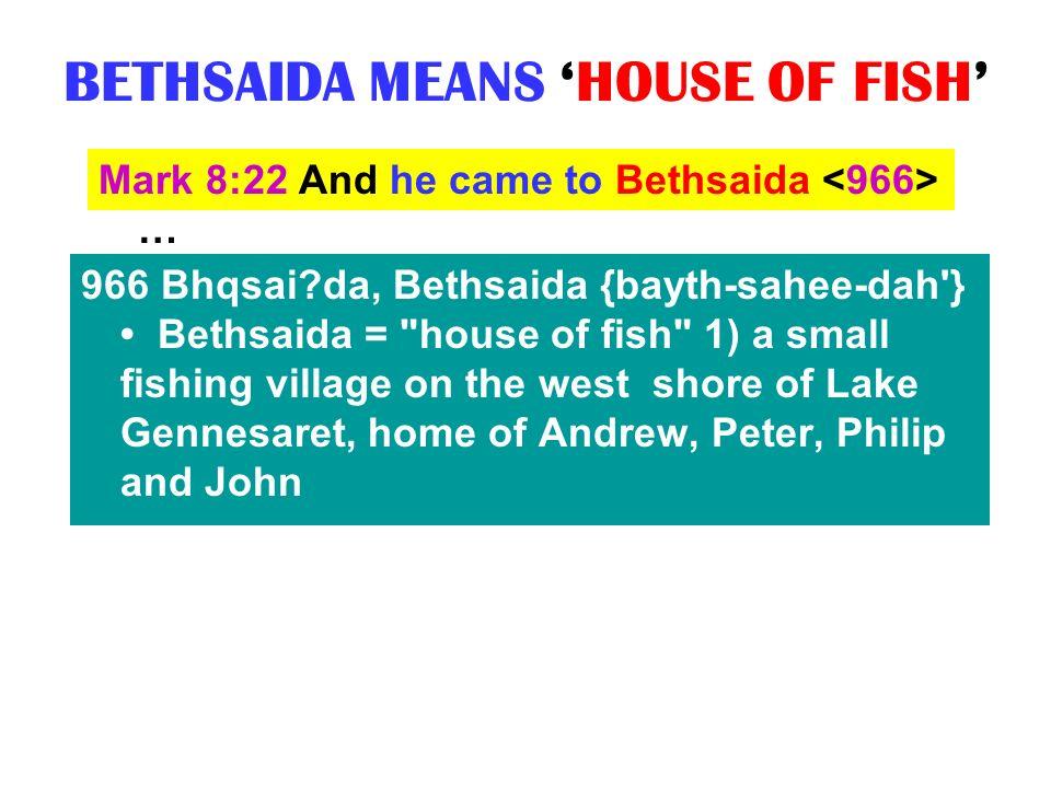 BETHSAIDA MEANS HOUSE OF FISH Mark 8:22 And he came to Bethsaida … 966 Bhqsai?da, Bethsaida {bayth-sahee-dah'} Bethsaida =