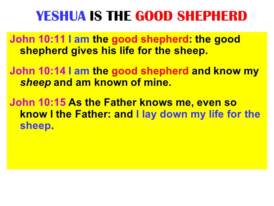 IS YESHUA THE MESSIAH .