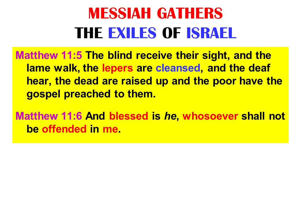 MESSIAH GATHERS THE EXILES OF ISRAEL Matthew 11:5 The blind receive their sight, and the lame walk, the lepers are cleansed, and the deaf hear, the de