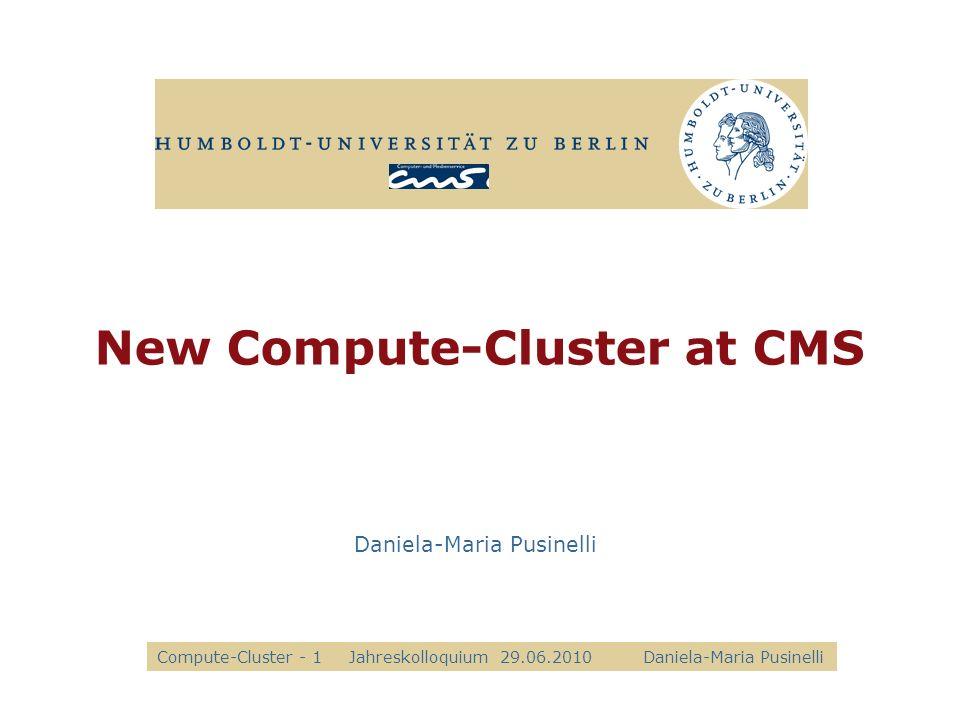 New Compute-Cluster at CMS Daniela-Maria Pusinelli Compute-Cluster - 1Jahreskolloquium 29.06.2010 Daniela-Maria Pusinelli