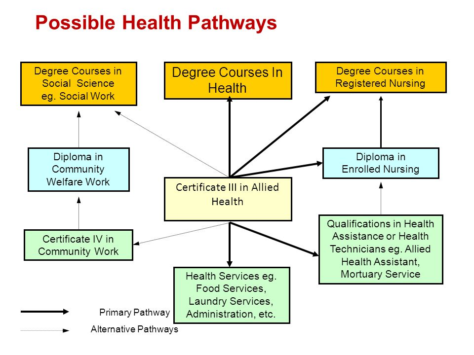 Possible Health Pathways Certificate III in Allied Health Health Services eg. Food Services, Laundry Services, Administration, etc. Diploma in Communi