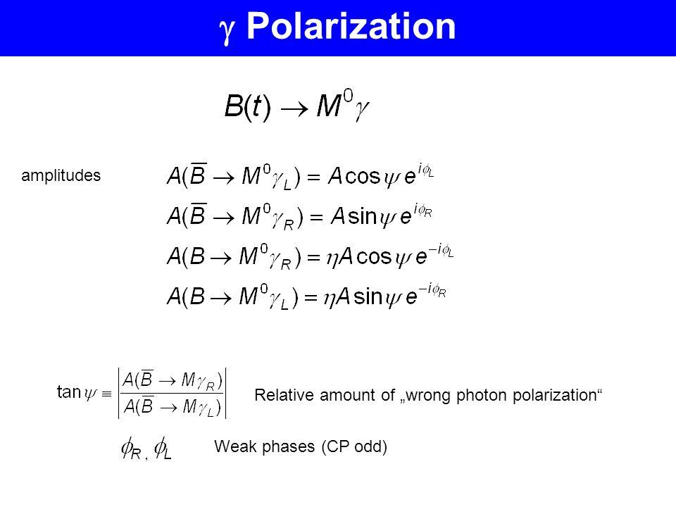 amplitudes Relative amount of wrong photon polarization Weak phases (CP odd)