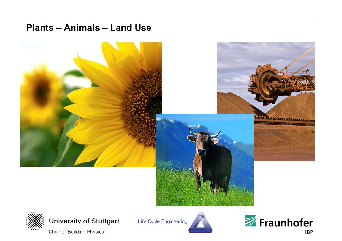 Plants – Animals – Land Use