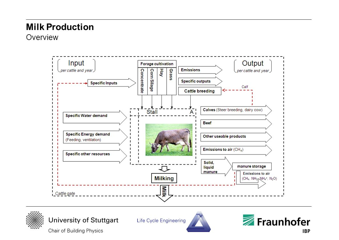 Milk Production Overview