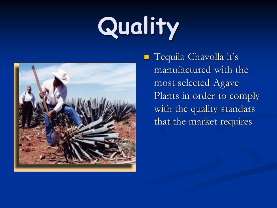 Quality Tequila Chavolla its manufactured with the most selected Agave Plants in order to comply with the quality standars that the market requires