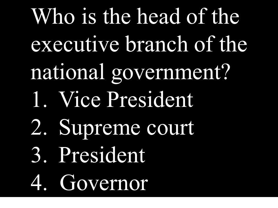 Who is the head of the executive branch of the national government? 1.Vice President 2.Supreme court 3.President 4. Governor