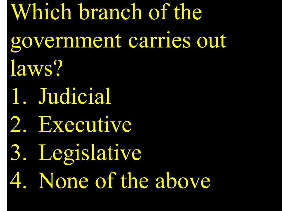 Which branch of the government carries out laws? 1.Judicial 2.Executive 3.Legislative 4.None of the above