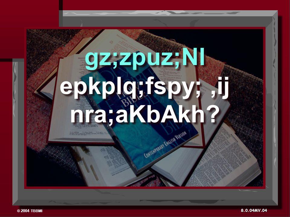 © 2004 TBBMI 8.0.04MV. gz;zpuz;Nl epkplq;fspy;,ij nra;aKbAkh 04