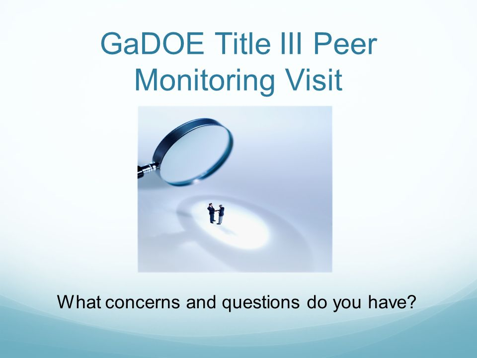 GaDOE Title III Peer Monitoring Visit What concerns and questions do you have