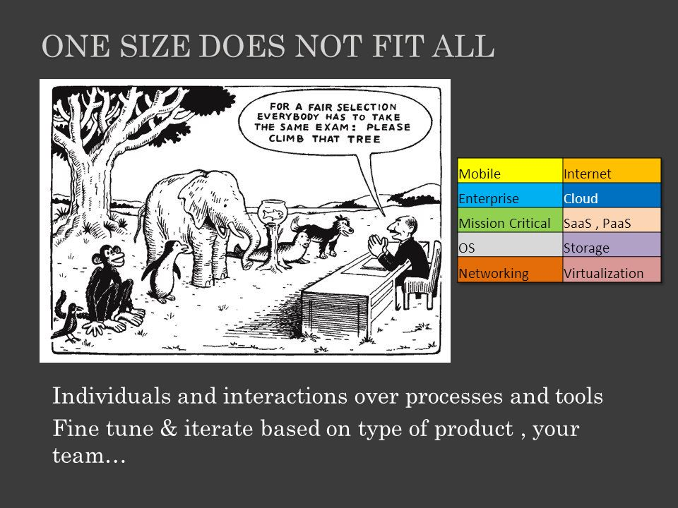 Individuals and interactions over processes and tools Fine tune & iterate based on type of product, your team… ONE SIZE DOES NOT FIT ALL