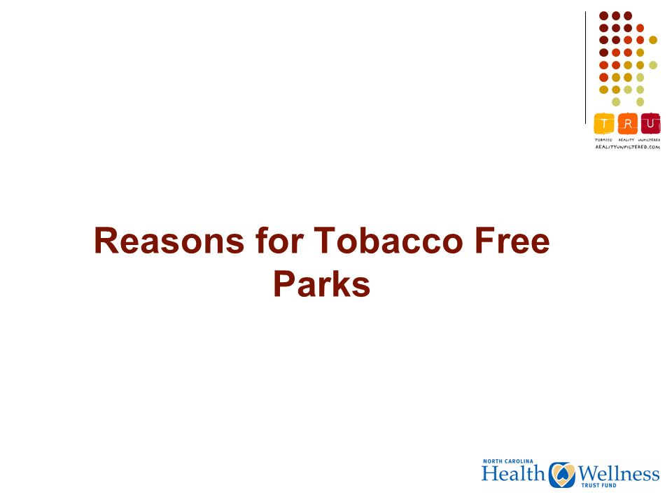 Reasons for Tobacco Free Parks