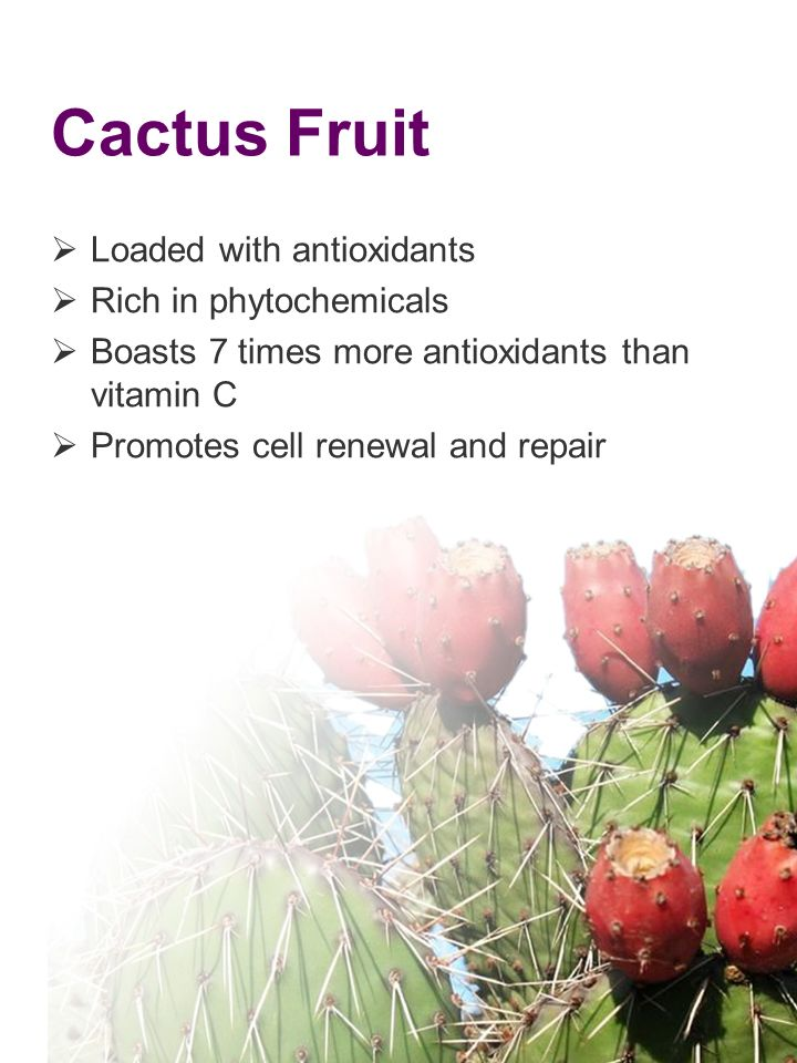 Cactus Fruit Loaded with antioxidants Rich in phytochemicals Boasts 7 times more antioxidants than vitamin C Promotes cell renewal and repair