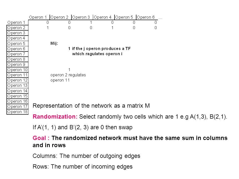 Representation of the network as a matrix M Randomization: Select randomly two cells which are 1 e.g A(1,3), B(2,1). If A(1, 1) and B(2, 3) are 0 then