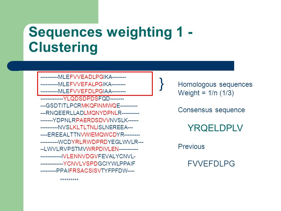 Sequences weighting 1 - Clustering ----------MLEFVVEADLPGIKA-------- ----------MLEFVVEFALPGIKA-------- ----------MLEFVVEFDLPGIAA-------- -------------