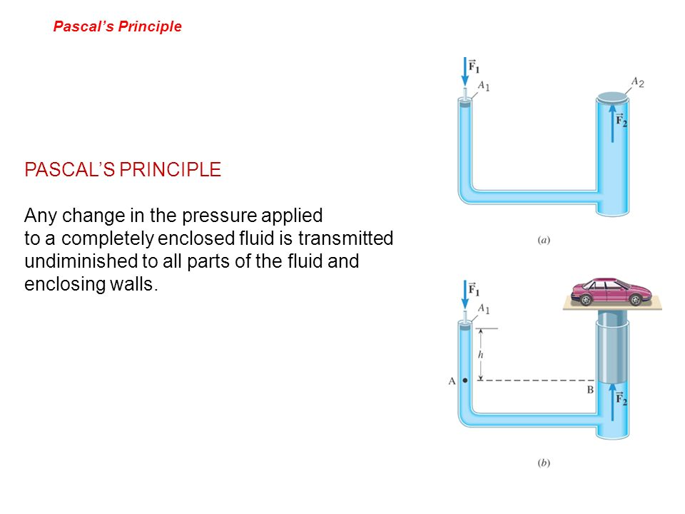 Pascals Principle PASCALS PRINCIPLE Any change in the pressure applied to a completely enclosed fluid is transmitted undiminished to all parts of the