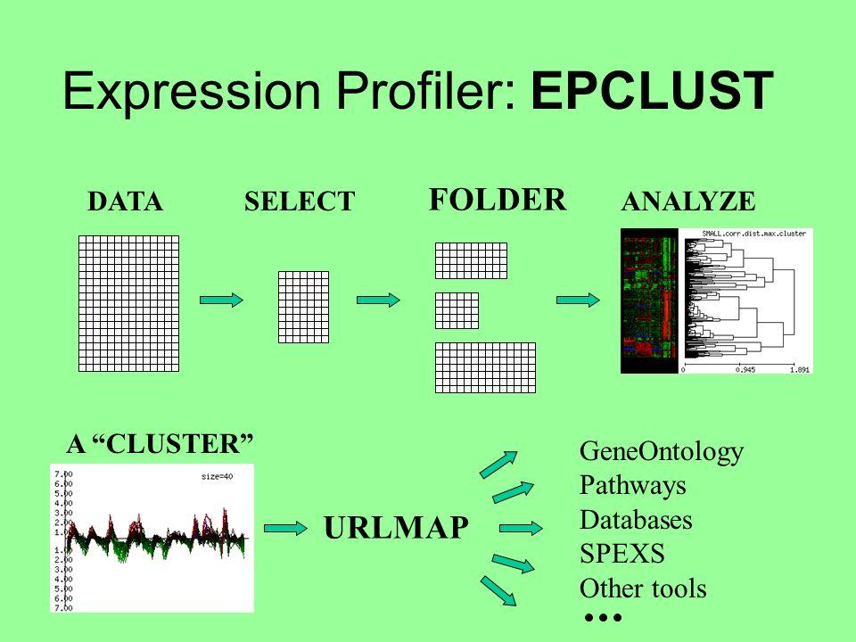 Expression Profiler: EPCLUST DATASELECT FOLDER ANALYZE A CLUSTER URLMAP GeneOntology Pathways Databases SPEXS Other tools