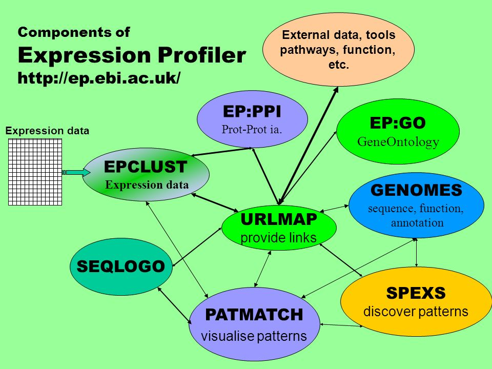 EPCLUST Expression data GENOMES sequence, function, annotation SPEXS discover patterns URLMAP provide links Components of Expression Profiler http://e
