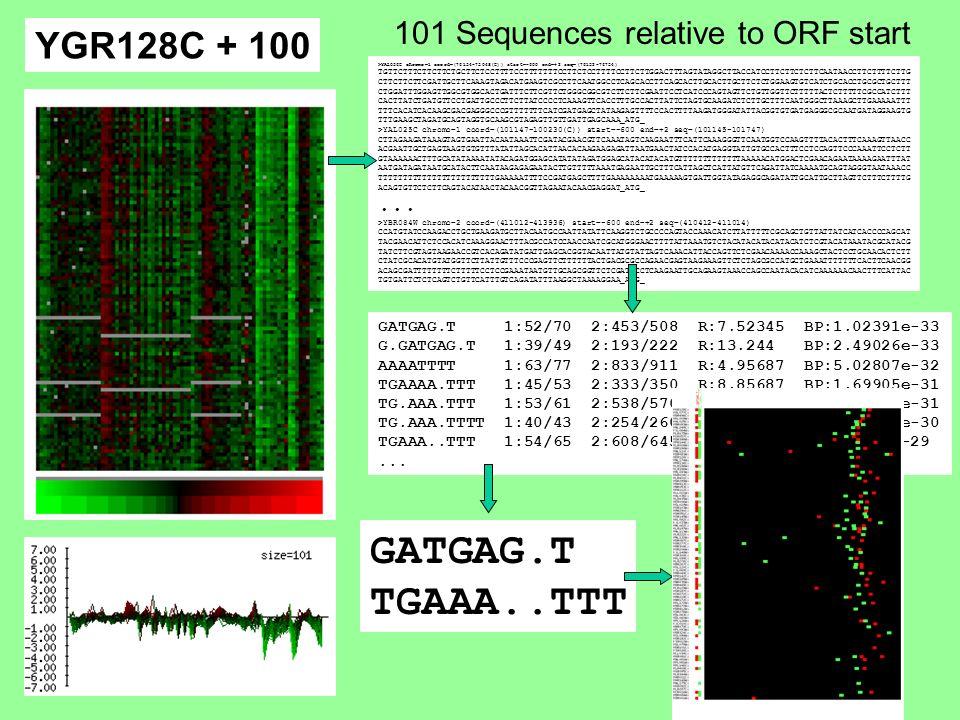 >YAL036C chromo=1 coord=(76154-75048(C)) start=-600 end=+2 seq=(76152-76754) TGTTCTTTCTTCTTCTGCTTCTCCTTTTCCTTTTTTTCCTTCTCCTTTTCCTTCTTGGACTTTAGTATAGGCTTACCATCCTTCTTCTCTTCAATAACCTTCTTTTCTTG CTTCTTCTTCGATTGCTTCAAAGTAGACATGAAGTCGCCTTCAATGGCCTCAGCACCTTCAGCACTTGCACTTGCTTCTCTGGAAGTGTCATCTGCACCTGCGCTGCTTT CTGGATTTGGAGTTGGCGTGGCACTGATTTCTTCGTTCTGGGCGGCGTCTTCTTCGAATTCCTCATCCCAGTAGTTCTGTTGGTTCTTTTTACTCTTTTTCGCCATCTTT CACTTATCTGATGTTCCTGATTGCCCTTCTTATCCCCTCAAAGTTCACCTTTGCCACTTATTCTAGTGCAAGATCTCTTGCTTTCAATGGGCTTAAAGCTTGAAAAATTT TTTCACATCACAAGCGACGAGGGCCCGTTTTTTTCATCGATGAGCTATAAGAGTTTTCCACTTTTAAGATGGGATATTACGGTGTGATGAGGGCGCAATGATAGGAAGTG TTTGAAGCTAGATGCAGTAGGTGCAAGCGTAGAGTTGTTGATTGAGCAAA_ATG_ >YAL025C chromo=1 coord=(101147-100230(C)) start=-600 end=+2 seq=(101145-101747) CTTAGAAGATAAAGTAGTGAATTACAATAAATTCGATACGAACGTTCAAATAGTCAAGAATTTCATTCAAAGGGTTCAATGGTCCAAGTTTTACACTTTCAAAGTTAACC ACGAATTGCTGAGTAAGTGTGTTTATATTAGCACATTAACACAAGAAGAGATTAATGAACTATCCACATGAGGTATTGTGCCACTTTCCTCCAGTTCCCAAATTCCTCTT GTAAAAAACTTTGCATATAAAATATACAGATGGAGCATATATAGATGGAGCATACATACATGTTTTTTTTTTTTTAAAAACATGGACTCGAACAGAATAAAAGAATTTAT AATGATAGATAATGCATACTTCAATAAGAGAGAATACTTGTTTTTAAATGAGAATTGCTTTCATTAGCTCATTATGTTCAGATTATCAAAATGCAGTAGGGTAATAAACC TTTTTTTTTTTTTTTTTTTTTTTTGAAAAATTTTCCGATGAGCTTTTGAAAAAAAATGAAAAAGTGATTGGTATAGAGGCAGATATTGCATTGCTTAGTTCTTTCTTTTG ACAGTGTTCTCTTCAGTACATAACTACAACGGTTAGAATACAACGAGGAT_ATG_...