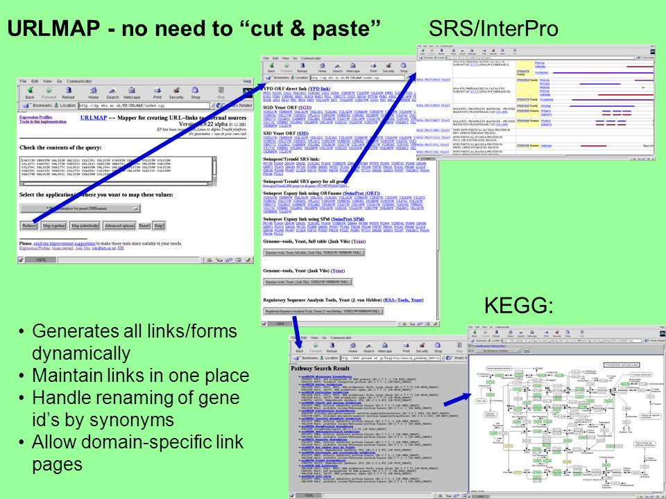 URLMAP - no need to cut & paste KEGG: SRS/InterPro Generates all links/forms dynamically Maintain links in one place Handle renaming of gene ids by synonyms Allow domain-specific link pages