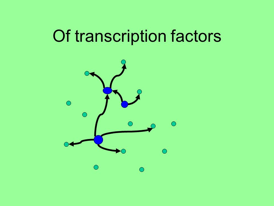 Of transcription factors