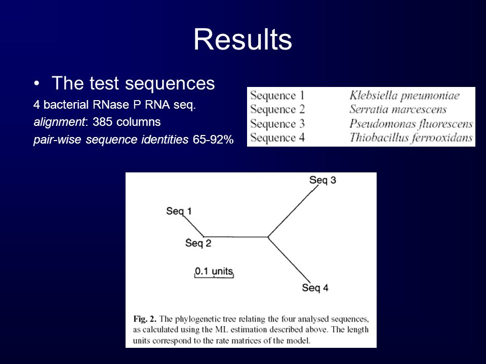 Results The test sequences 4 bacterial RNase P RNA seq. alignment: 385 columns pair-wise sequence identities 65-92%