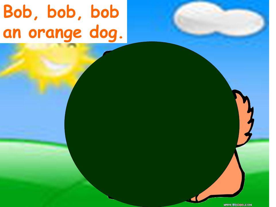 Bob, bob, bob an orange dog.