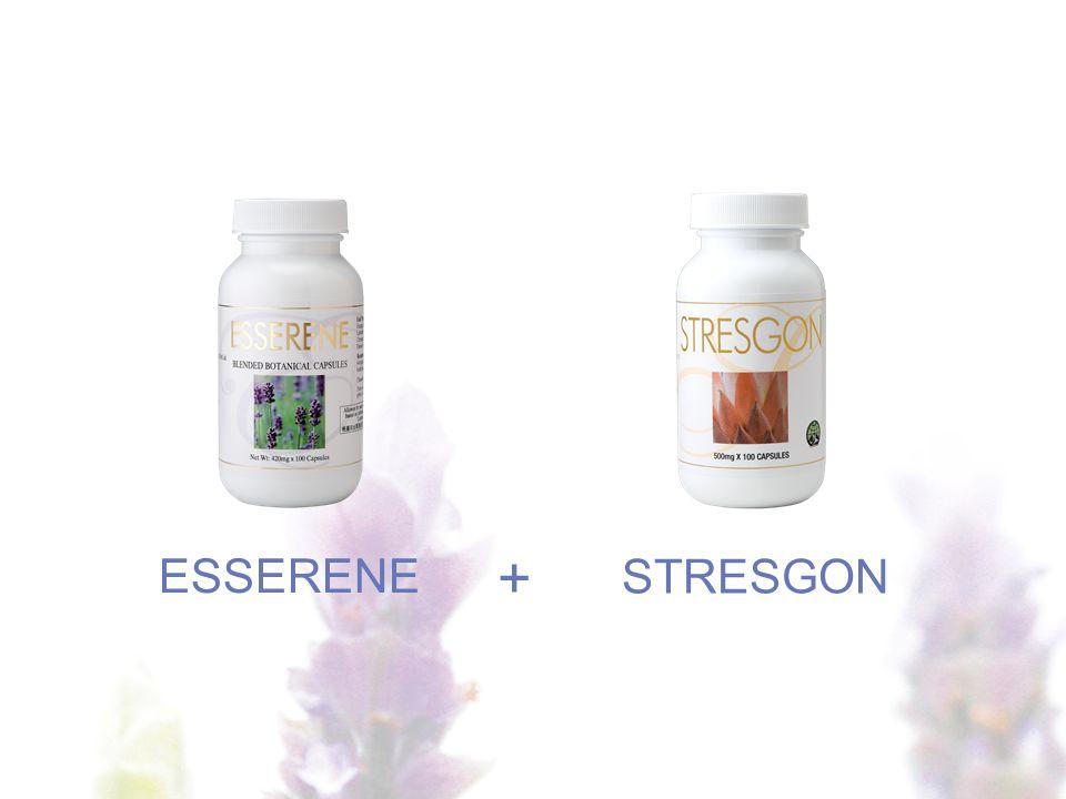 ESSERENE STRESGON + 1-Shape +