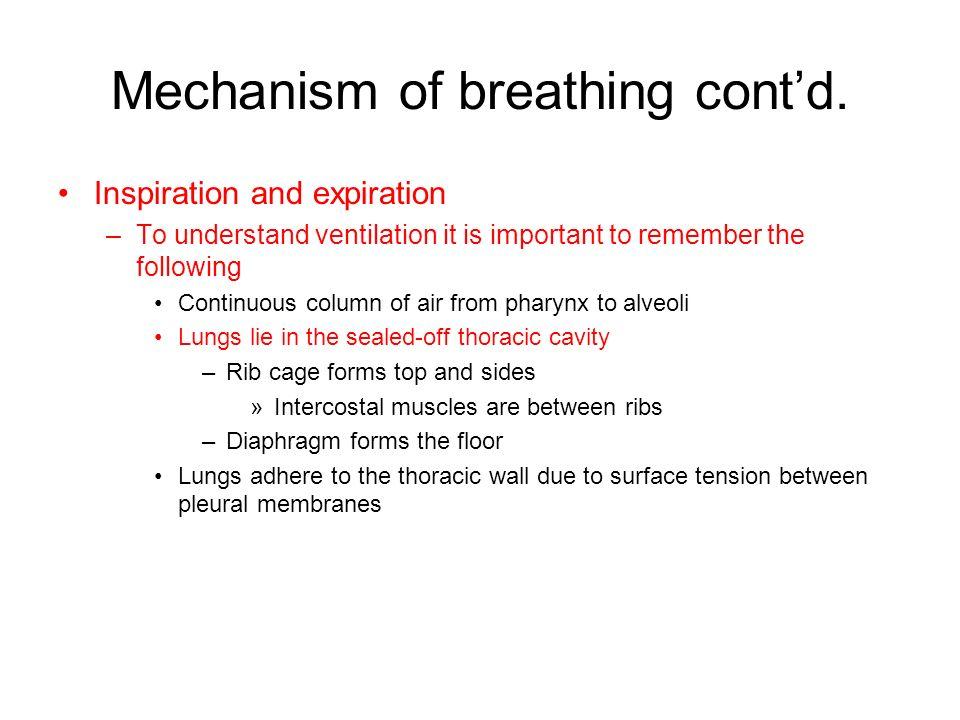 Mechanism of breathing contd.