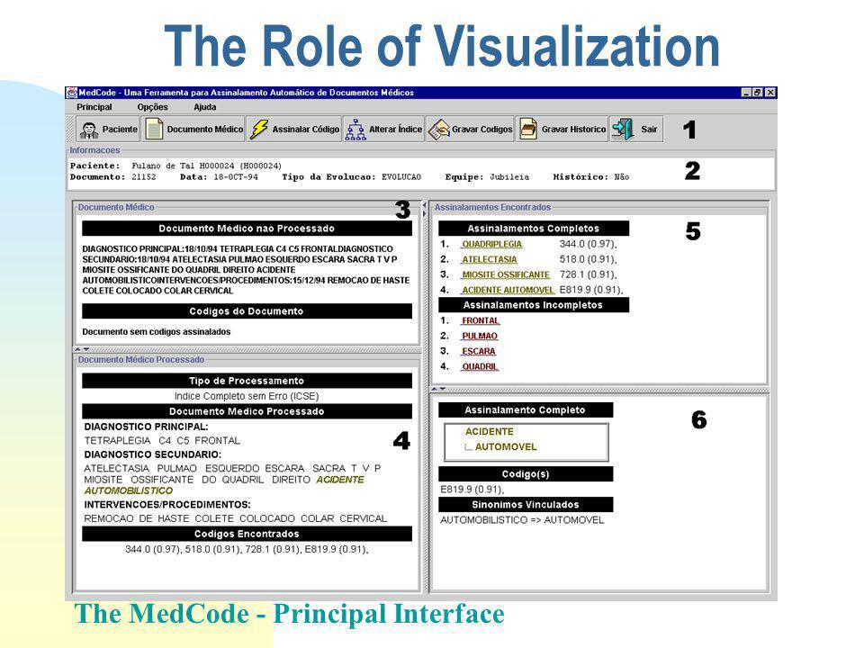 The Role of Visualization The MedCode - Principal Interface
