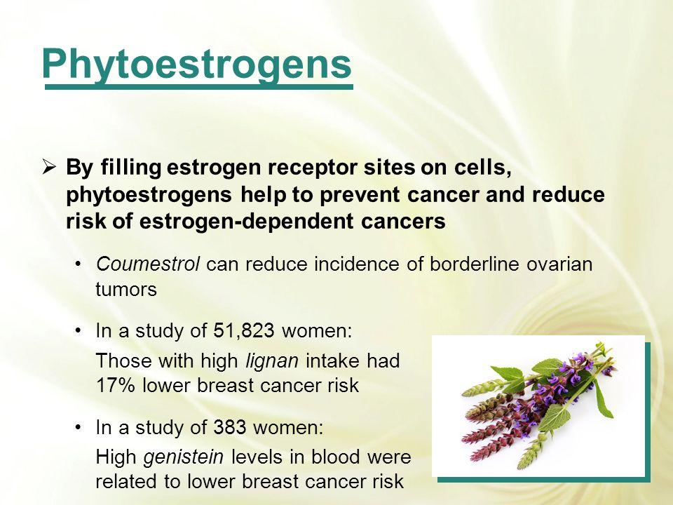 By filling estrogen receptor sites on cells, phytoestrogens help to prevent cancer and reduce risk of estrogen-dependent cancers Coumestrol can reduce