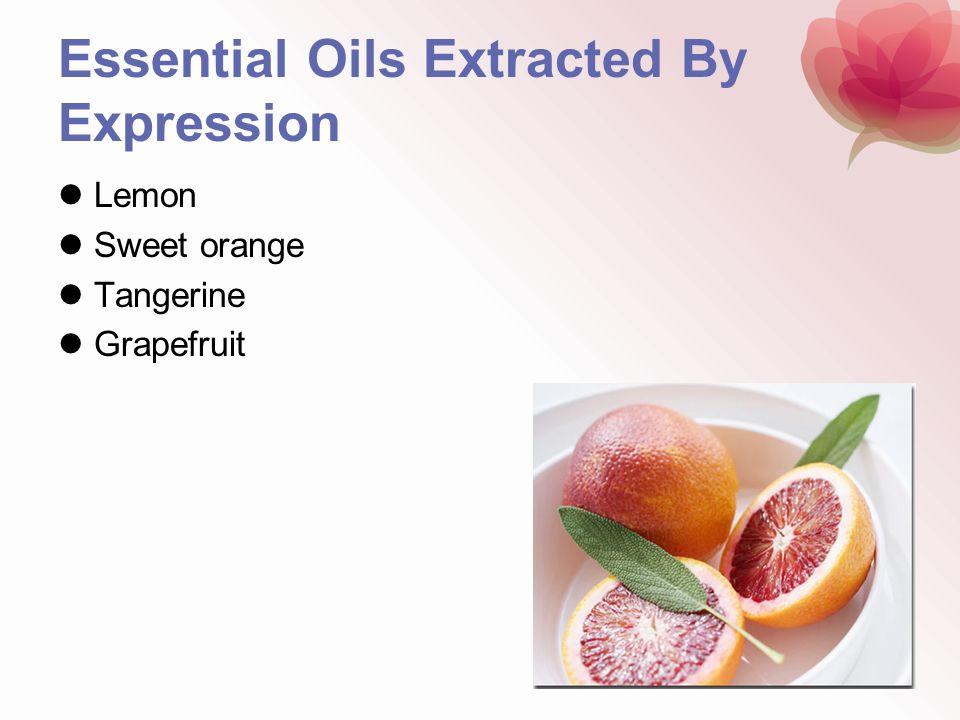 Essential Oils Extracted By Expression Lemon Sweet orange Tangerine Grapefruit