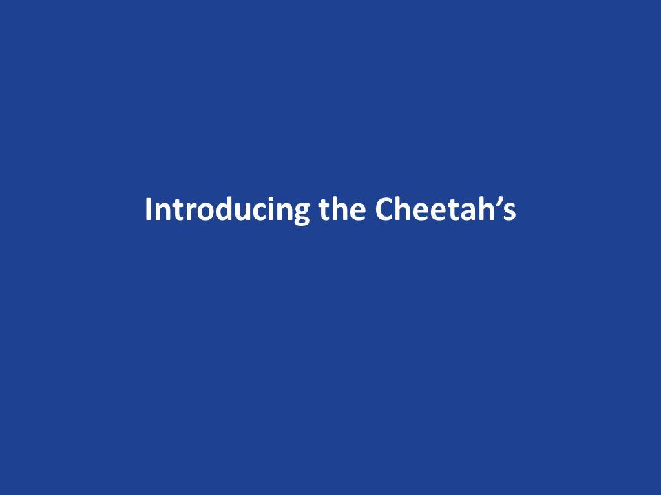 Introducing the Cheetahs