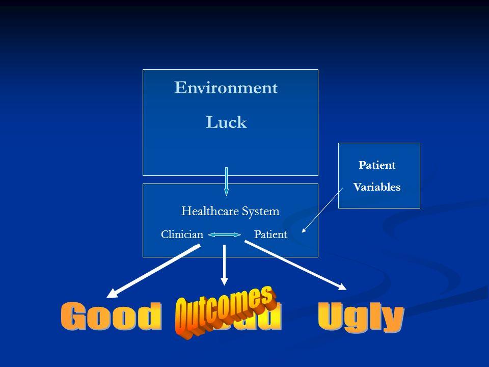 Environment Luck Healthcare System Clinician Patient Patient Variables